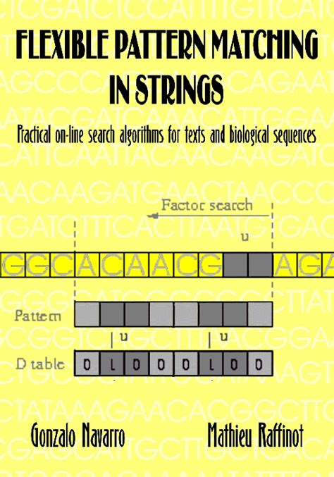 pattern matching in c strings flexible pattern matching in strings