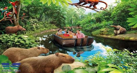 Promo Tiket River Safari Singapore Dewasa jual tiket river safari singapore kenikura tour