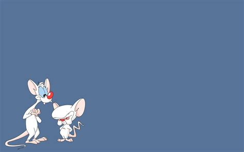 pinky wallpaper pinky and the brain wallpaper