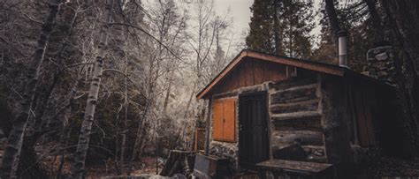 Bugs Cabins by Bug Out Cabins 5 Tips For Building Your Own
