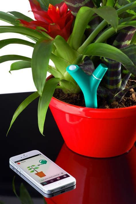 flower power technology monitors  health  house