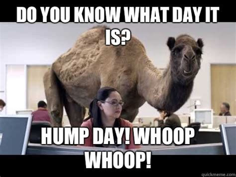 Funny Hump Day Memes - do you know what day it is hump day meme picsmine
