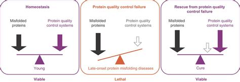 protein quality surviving protein quality catastrophes from