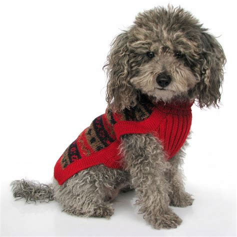 puppies in sweaters in a sweater invitations ideas