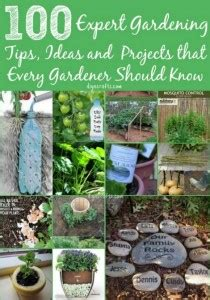 gardenia care guide why didn t i think of that 10 great ideas that will make you say why didn t i think