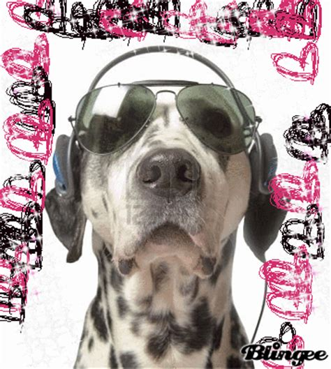 djs dogs dj picture 130312437 blingee