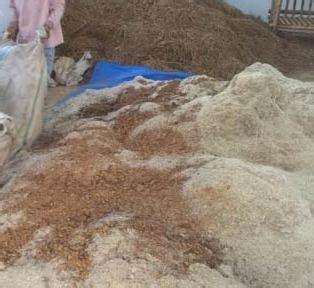 Bungkil Kedelai Fermentasi daftar ransum dan kosentrat untuk pakan sapi