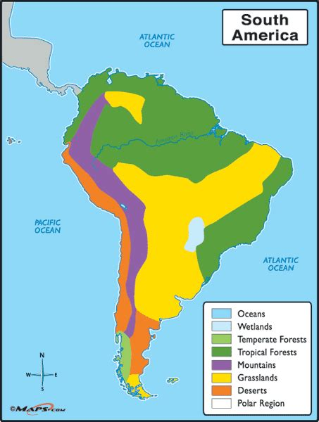 america map biome south american biomes