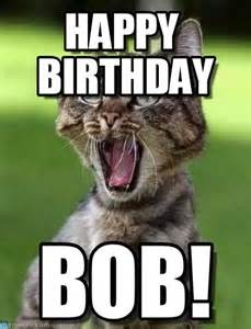Gay Cat Meme - happy birthday screaming cat meme on memegen