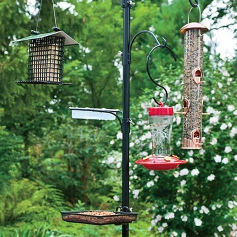 multi bird feeder station birdcage design ideas