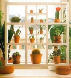Plants On Windows Plant Shelves Window And Window Plants On