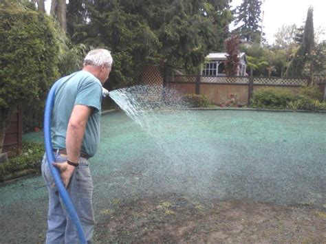how to hydroseed a lawn