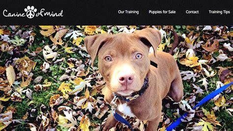 puppy classes chicago chicago consonant clients