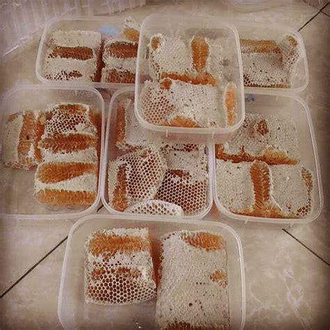 Honeycomb Madu Sarang Asli madu sarang dan madu peras asli segarrr ibuhamil