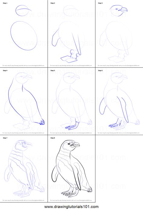 magellanic penguin coloring page how to draw a magellanic penguin printable step by step