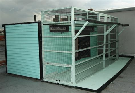 Small Loft Design Ideas tippler pigeon lofts bing images