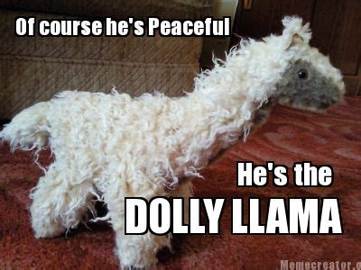 Shaved Llama Meme - shaved llama meme 28 images llama memes alpaca memes