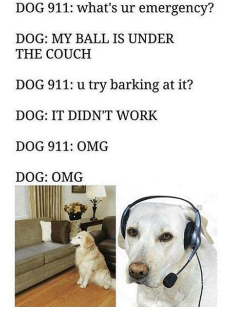Barking Dog Meme - 25 best memes about omg dog omg dog memes