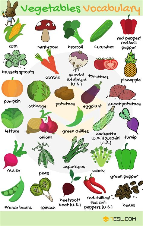 e fruits and vegetables fruits and vegetables vocabulary in 7 e s l