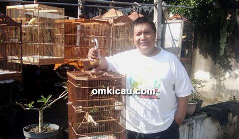 Obat Cacing Kenari gejala cacingan pada burung jenis cacing yang sering