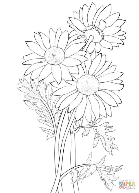 bouquet of daisies coloring pages coloring pages