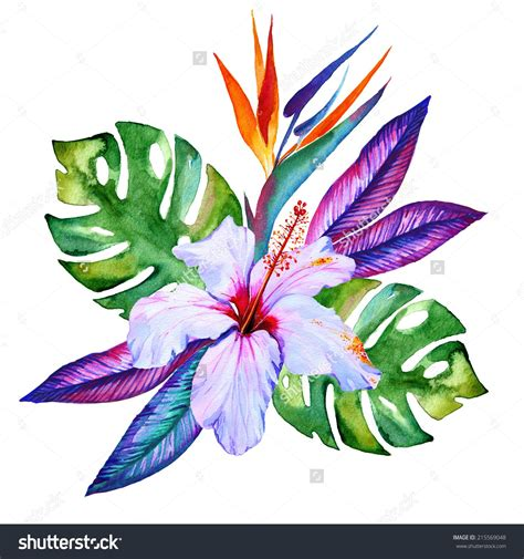 tropical flower tattoo tropical flowers in watercolor hibiscus plumeria