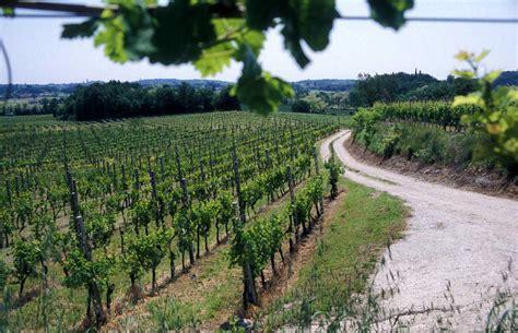 vini mantovani strada dei vini e dei sapori mantovani vini e sapori di