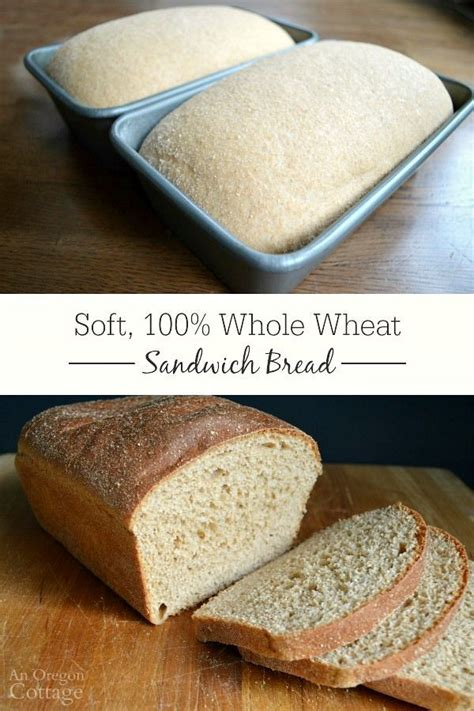 Blue Ribbon Breads soft 100 whole wheat sandwich bread recipe biscuits