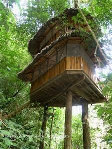 Treehouse Community Costa Rica S Finca Bellavista Treehouse Community Is 100