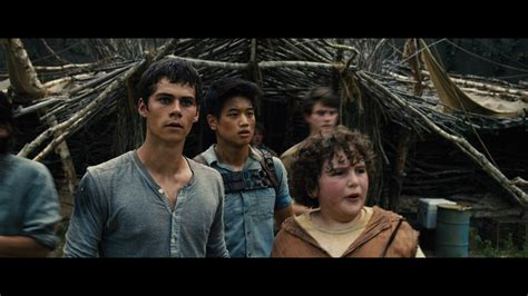 the maze runner film video dylan o brien talks the maze runner quot mtv hair quot and more