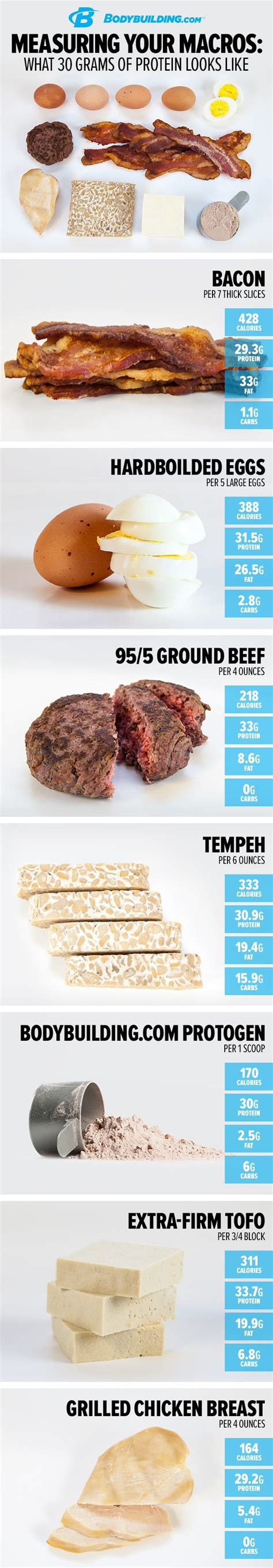 protein 30 grams measuring your macros what 30 grams of protein looks like