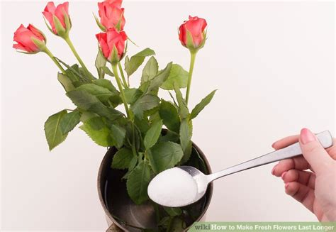 Fresh Flowers by 4 Ways To Make Fresh Flowers Last Longer Wikihow