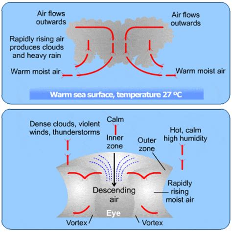 cyclone formation diagram how tropical cyclones form www pixshark images