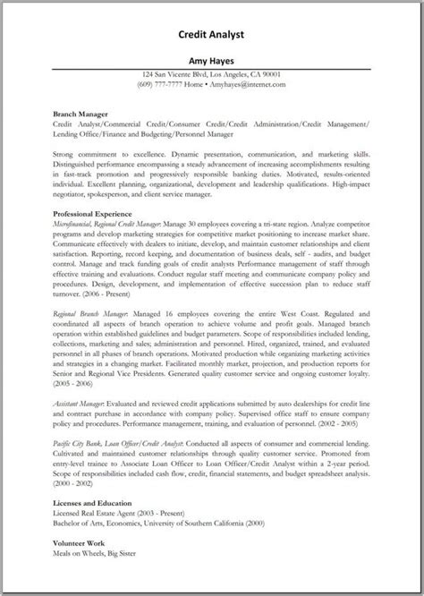 Credit Analyst Resume Sample by 14 Best Sample Of Professional Resumes Images On Pinterest