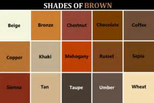 different colors of brown colors kutensky