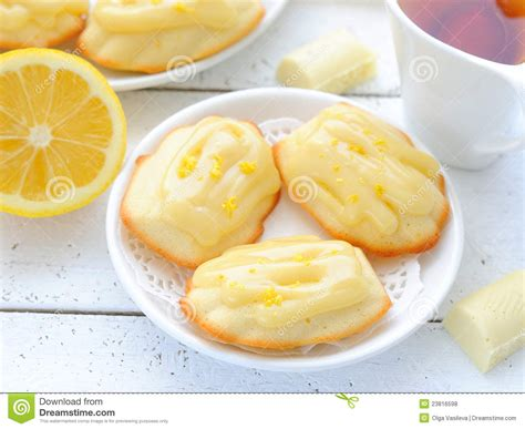 the french cookies madeleine royalty free stock photos