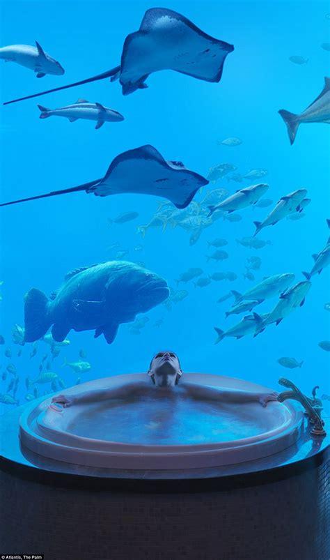 Suite Neptune Underwater Underwater Hotels Around The World L Ecoresorts