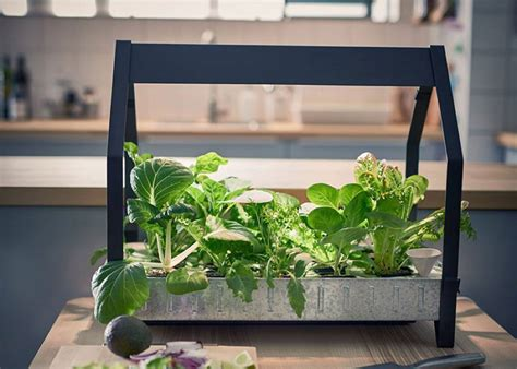 ikea garden kit indoor gardening products by ikea fubiz media