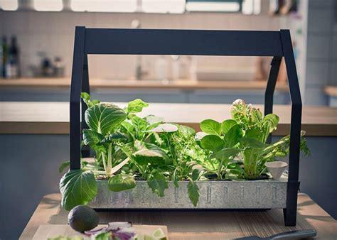 ikea garden kit indoor gardening products by ikea fubiz media