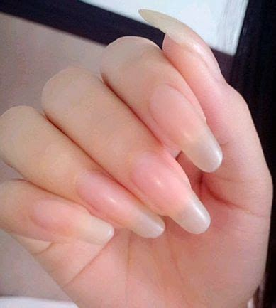 how to make nail beds longer 25 best ideas about long natural nails on pinterest