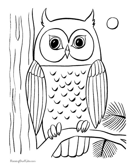 Free Printable Owl Coloring Pages | cute owl coloring pages coloring home