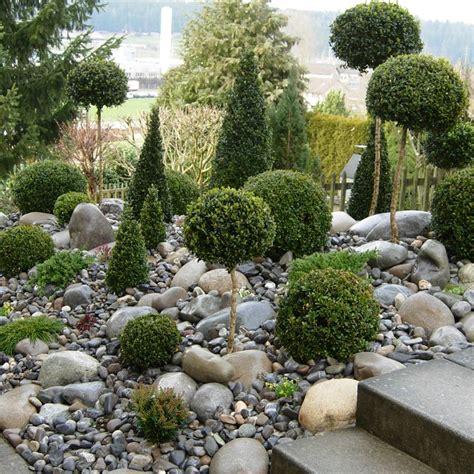 kletterhilfen f r pflanzen pflanzen steingarten pflanzen in nanopics steingarten