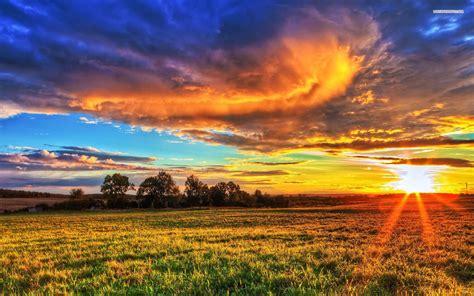 sunset   prairie field tree grass sky cloud nature