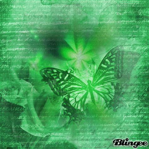1604 green butterfly images wallpaper walops com green butterflies normal background picture 124451169