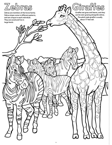 big coloring books coloring books zoo animals really big coloring book