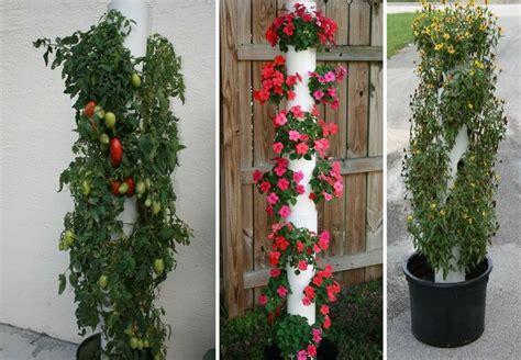 Small Vertical Garden Small Garden Pvc Pipe Vertical Garden Set In The Ground