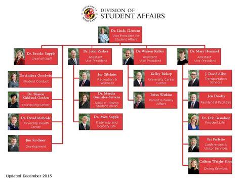 The Organization organization chart umd student affairs