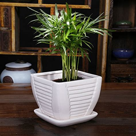 white ceramic flower pot plant pot square