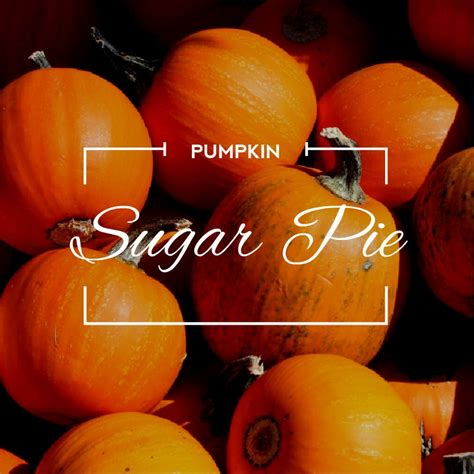 Product Find Pumpkin Sugar by Sugar Pie Pumpkin