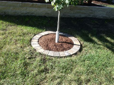 Baum Mit Steinen Umranden by A Simple Tree Ring With Circle Pavers Stony Creek